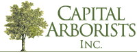 Capital Arborists Logo