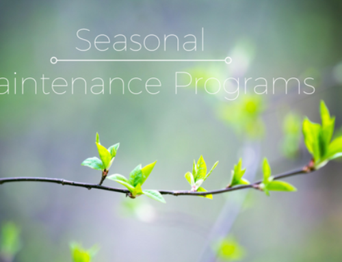 Seasonal Maintenance Programs